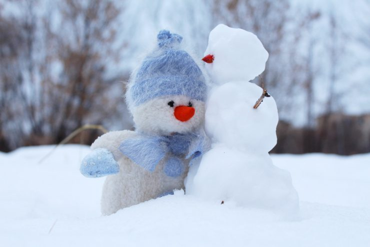 Polar frost and the snowman. Credit: Pexels